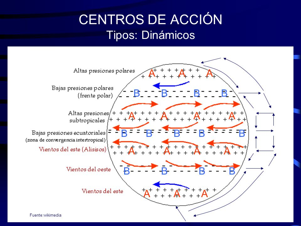 CENTROS DE ACCIÓN Tipos: Dinámicos