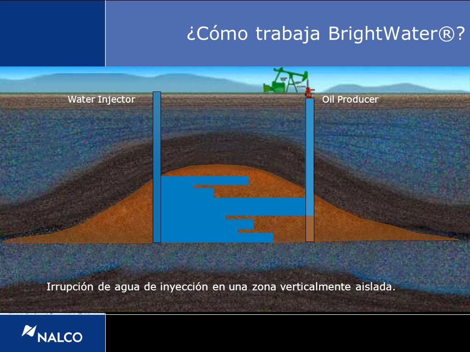 ¿Cómo trabaja BrightWater®