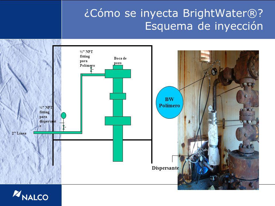 ¿Cómo se inyecta BrightWater® Esquema de inyección