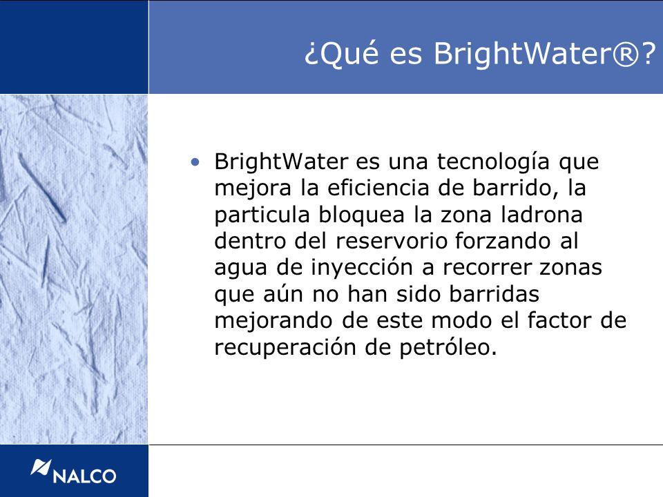 ¿Qué es BrightWater®