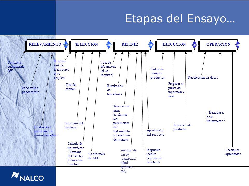Etapas del Ensayo… RELEVAMIENTO SELECCION DEFINIR EJECUCION OPERACION