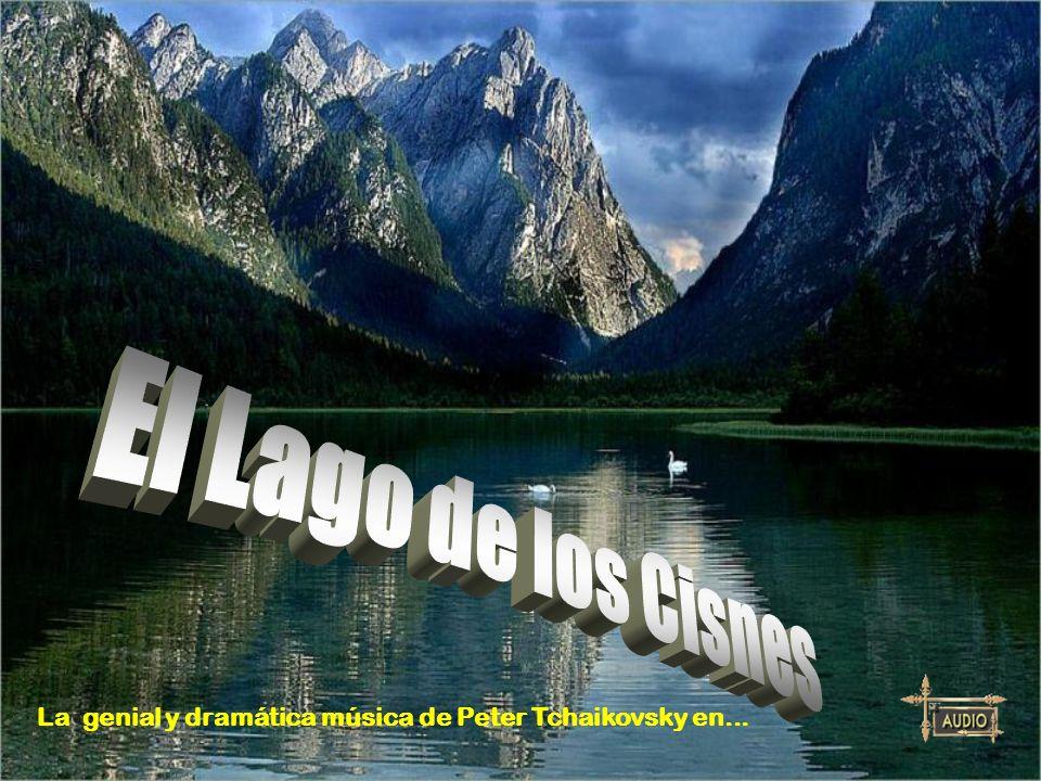 El Lago de los Cisnes La genial y dramática música de Peter Tchaikovsky en...
