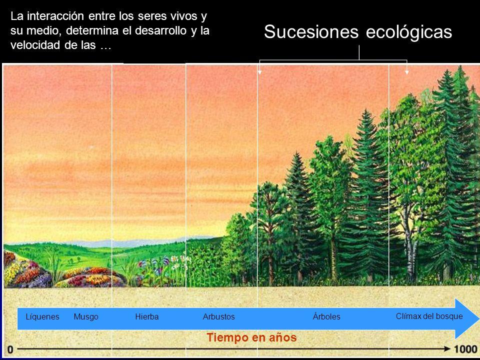 Sucesiones ecológicas