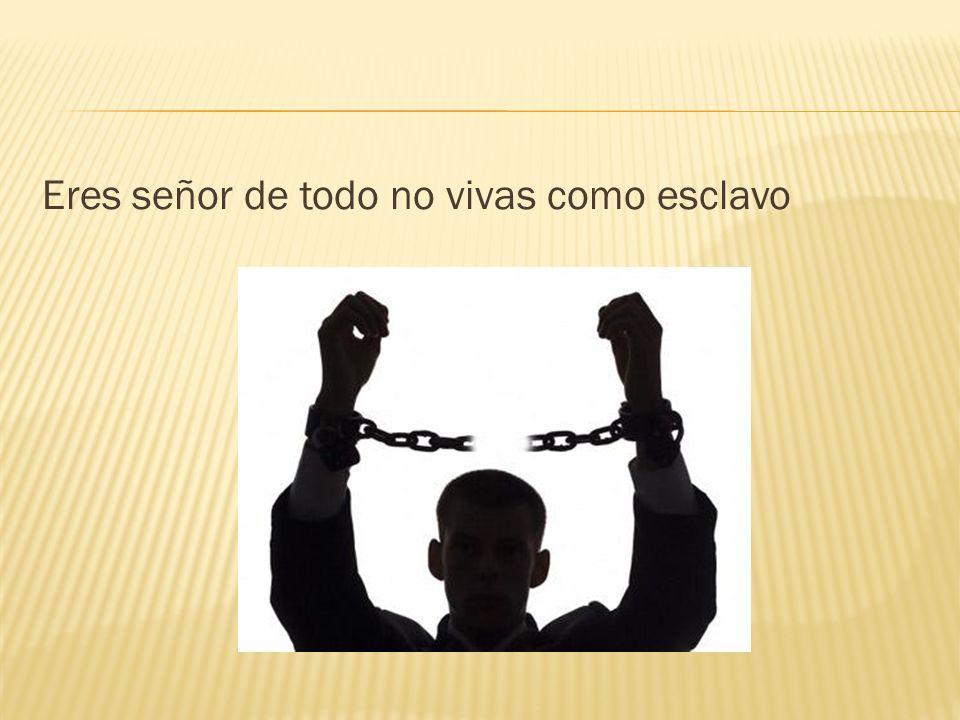 Eres señor de todo no vivas como esclavo