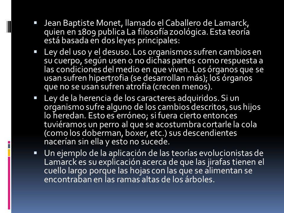 Jean Baptiste Monet, llamado el Caballero de Lamarck, quien en 1809 publica La filosofía zoológica. Esta teoría está basada en dos leyes principales: