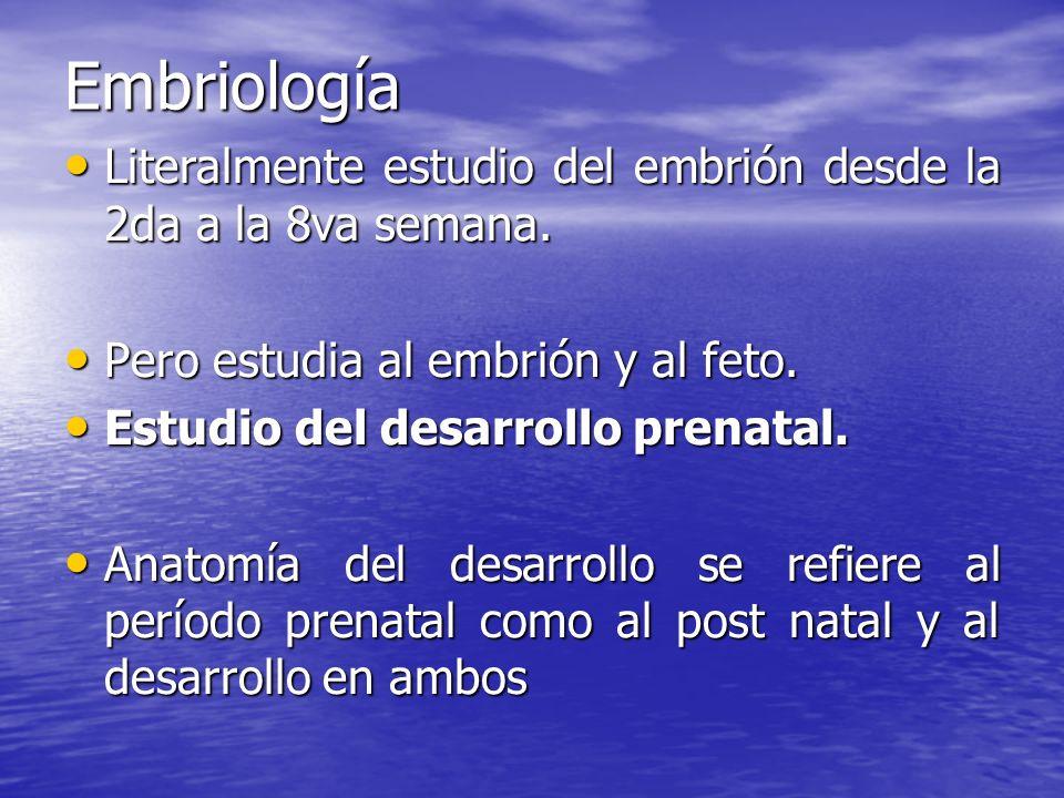 EmbriologíaLiteralmente estudio del embrión desde la 2da a la 8va semana. Pero estudia al embrión y al feto.