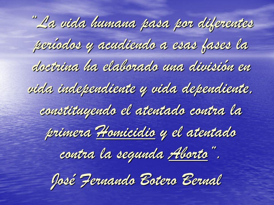José Fernando Botero Bernal