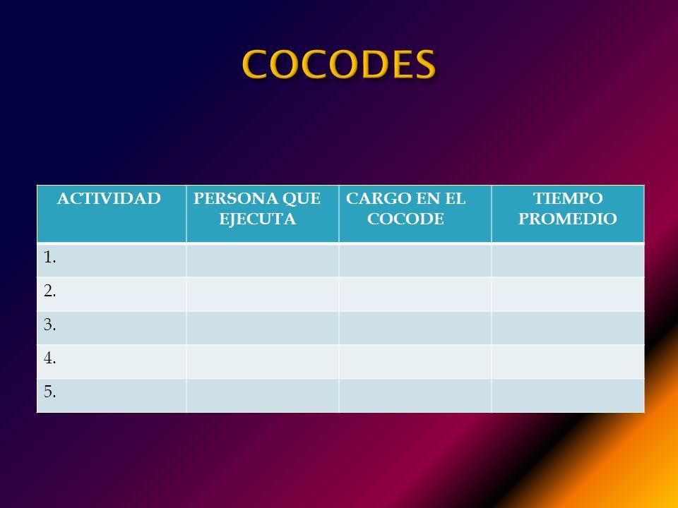 COCODES ACTIVIDAD PERSONA QUE EJECUTA CARGO EN EL COCODE