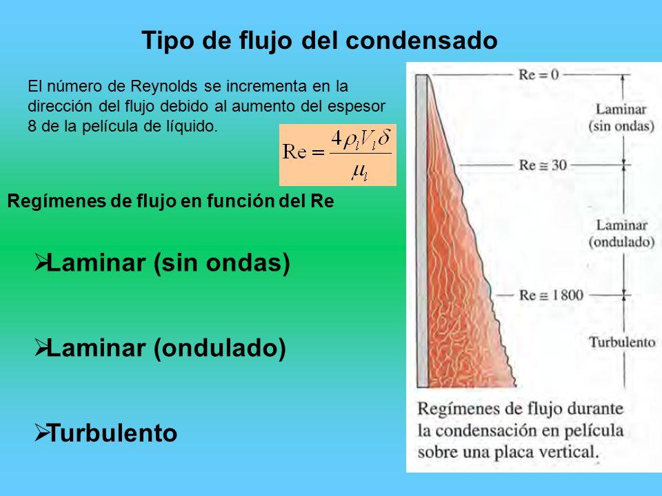 Perfecto Función De Placa De La Uña Elaboración - Ideas Para ...