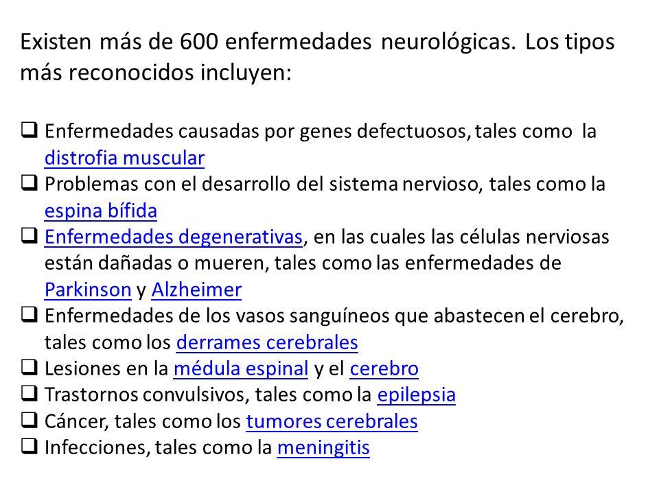 Existen más de 600 enfermedades neurológicas