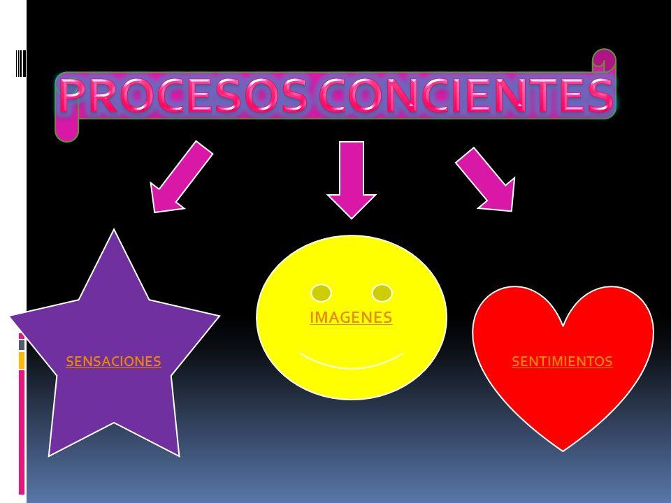 PROCESOS CONCIENTES SENSACIONES IMAGENES SENTIMIENTOS