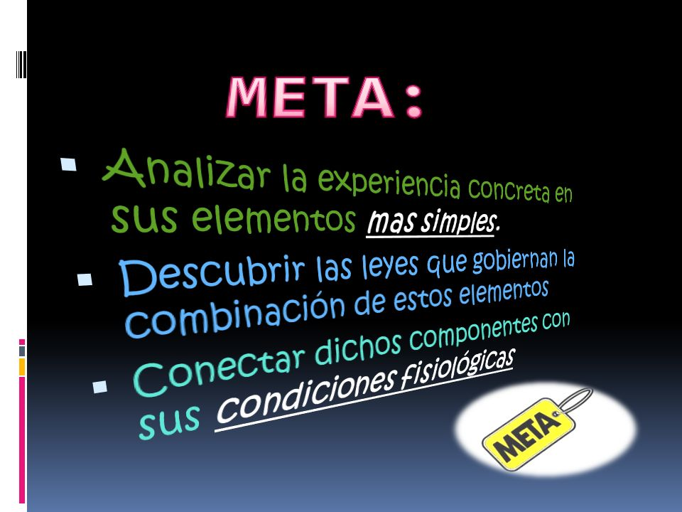 META: Analizar la experiencia concreta en sus elementos mas simples.