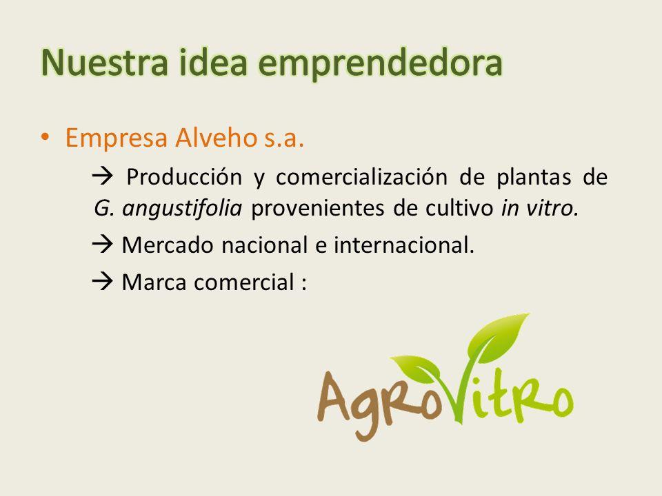 Nuestra idea emprendedora