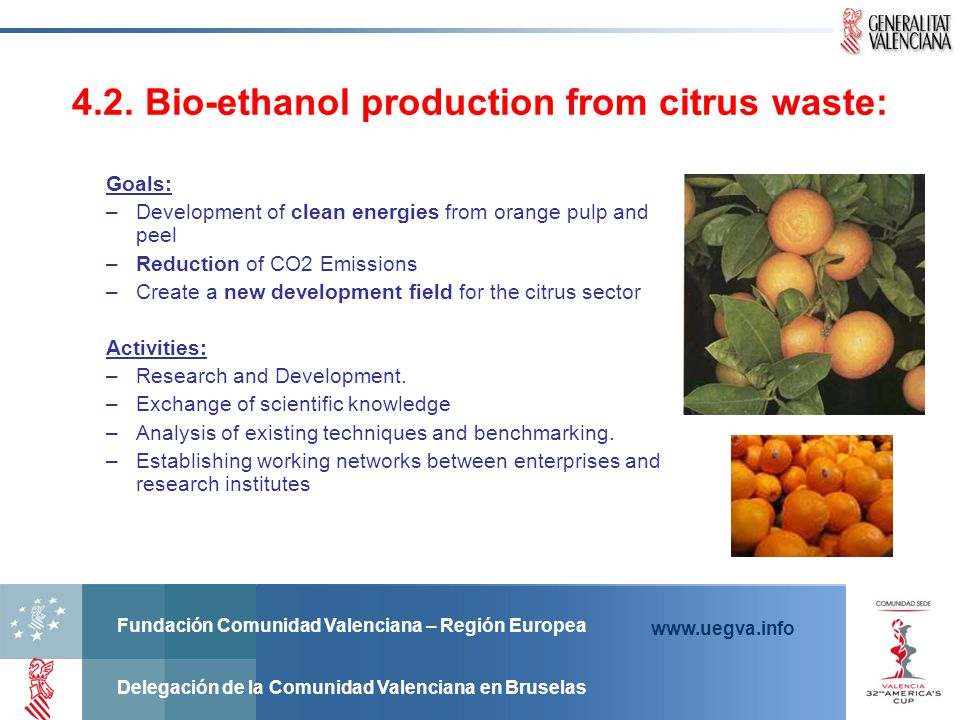 4.2. Bio-ethanol production from citrus waste: