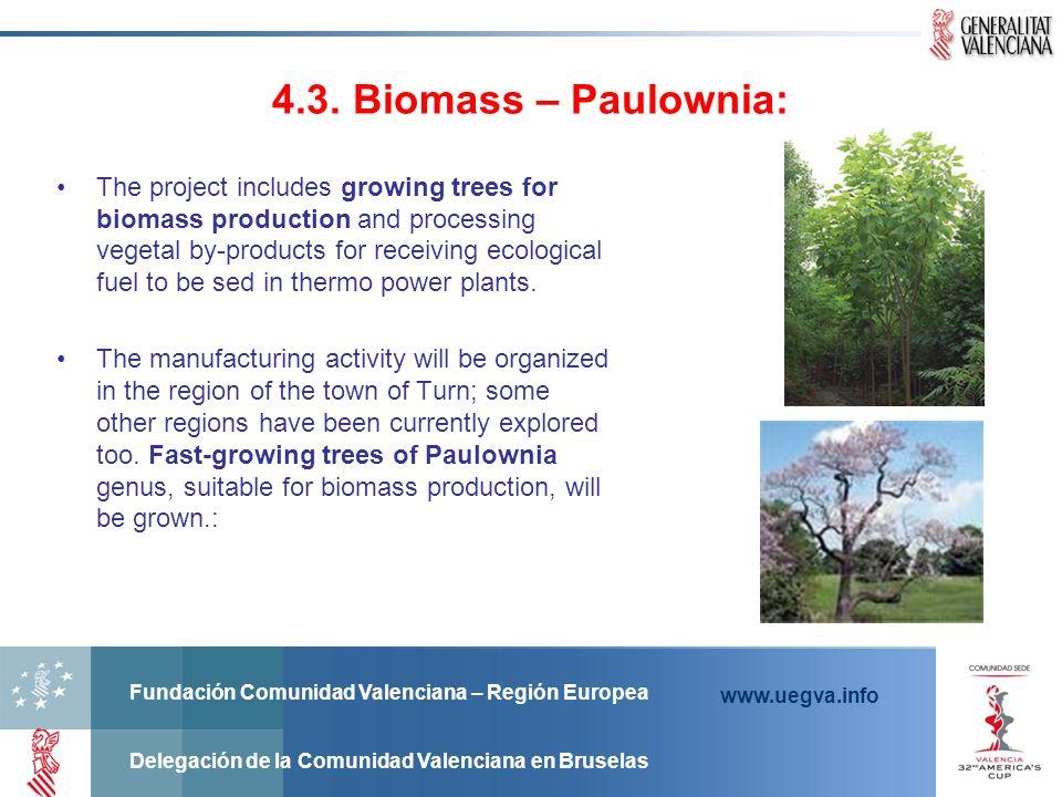 4.3. Biomass – Paulownia: