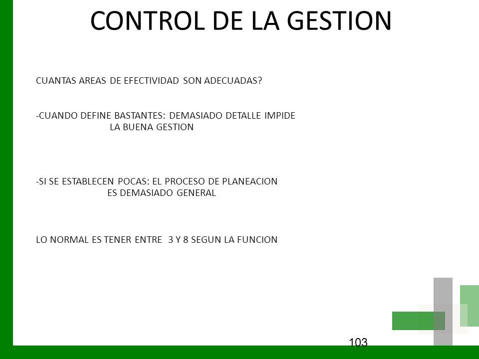 CONTROL DE LA GESTION