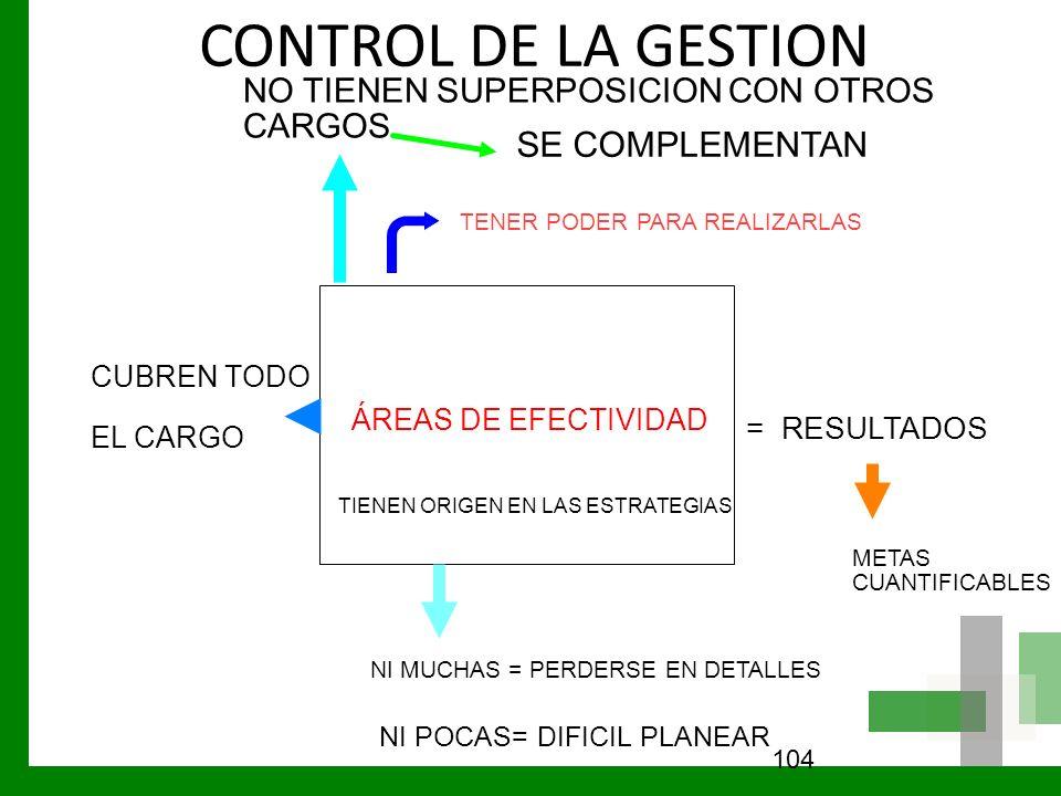CONTROL DE LA GESTION SE COMPLEMENTAN