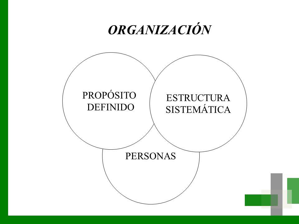 ORGANIZACIÓN PROPÓSITO DEFINIDO ESTRUCTURA SISTEMÁTICA PERSONAS LGP