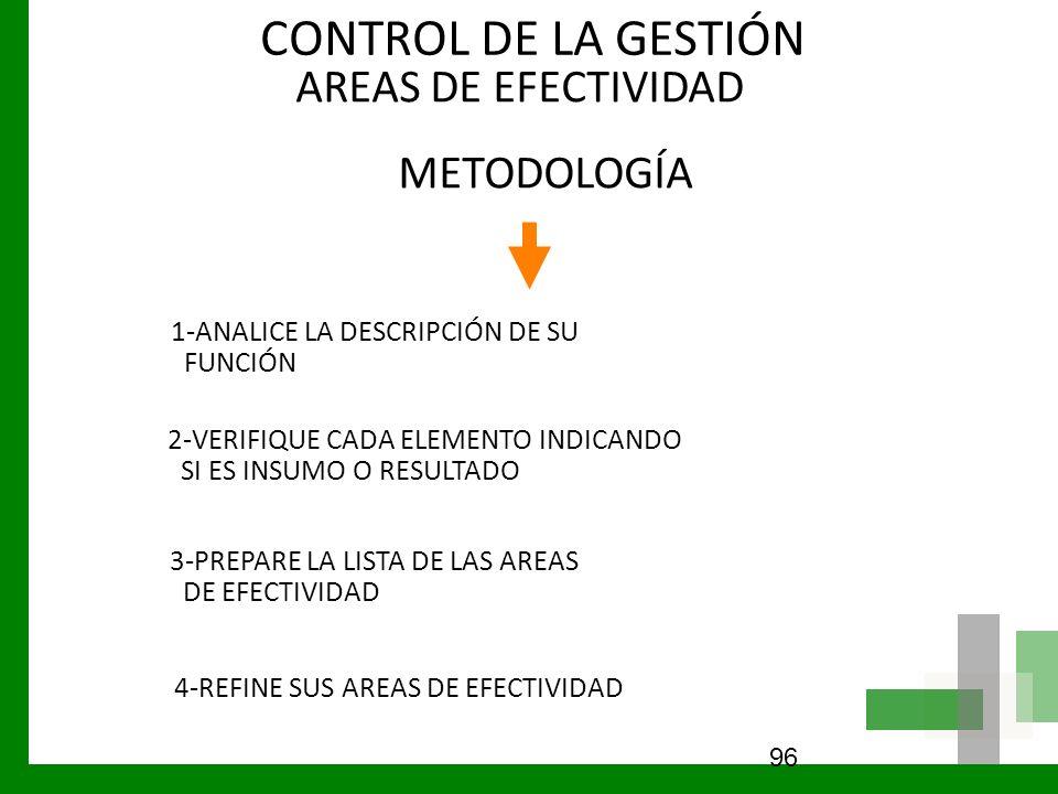 AREAS DE EFECTIVIDAD METODOLOGÍA