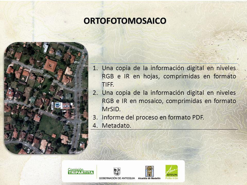 ORTOFOTOMOSAICO Una copia de la información digital en niveles RGB e IR en hojas, comprimidas en formato TIFF.