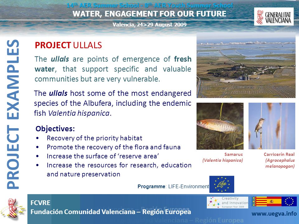 PROJECT EXAMPLES PROJECT ULLALS