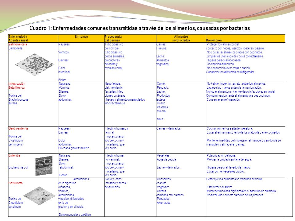 Cuadro 1: Enfermedades comunes transmitidas a través de los alimentos, causadas por bacterias