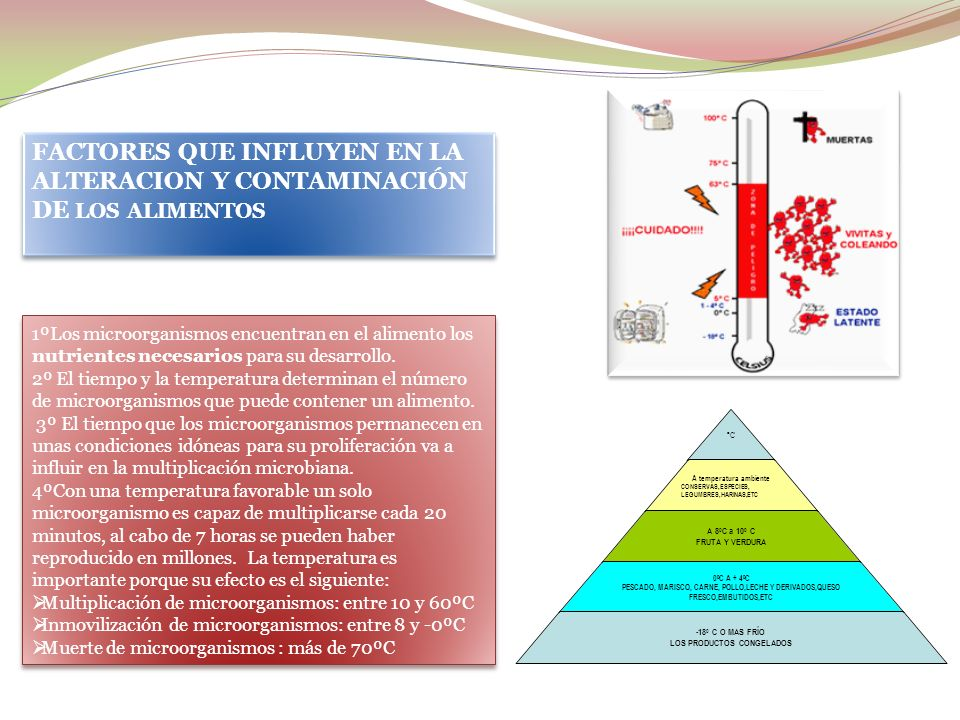 FACTORES QUE INFLUYEN EN LA ALTERACION Y CONTAMINACIÓN DE LOS ALIMENTOS
