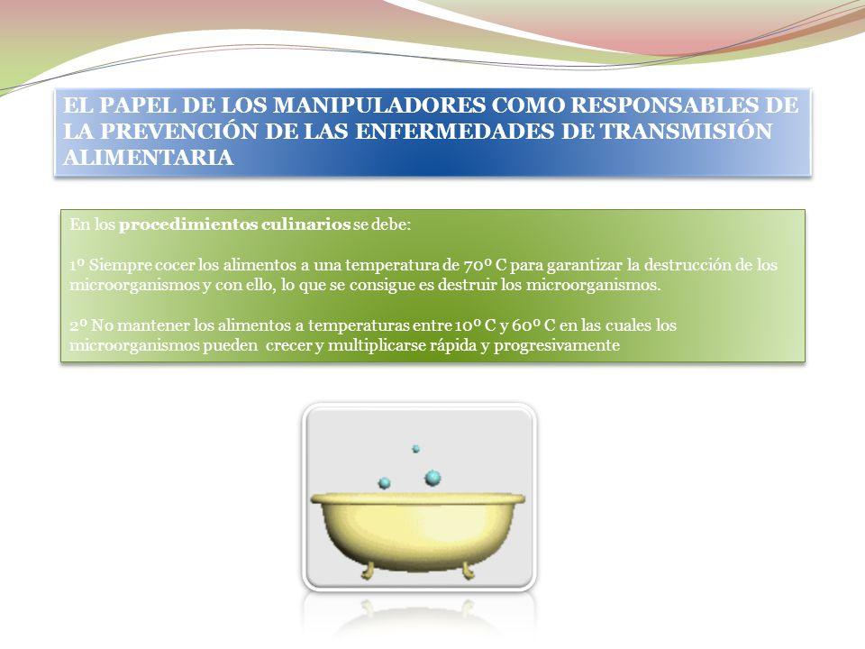 EL PAPEL DE LOS MANIPULADORES COMO RESPONSABLES DE LA PREVENCIÓN DE LAS ENFERMEDADES DE TRANSMISIÓN ALIMENTARIA