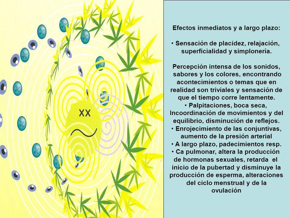 Efectos inmediatos y a largo plazo: Sensación de placidez, relajación,