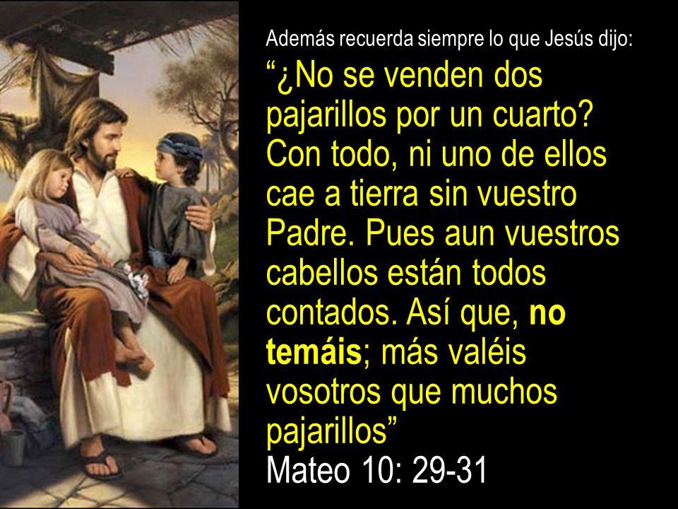 Además recuerda siempre lo que Jesús dijo: ¿No se venden dos pajarillos por un cuarto.