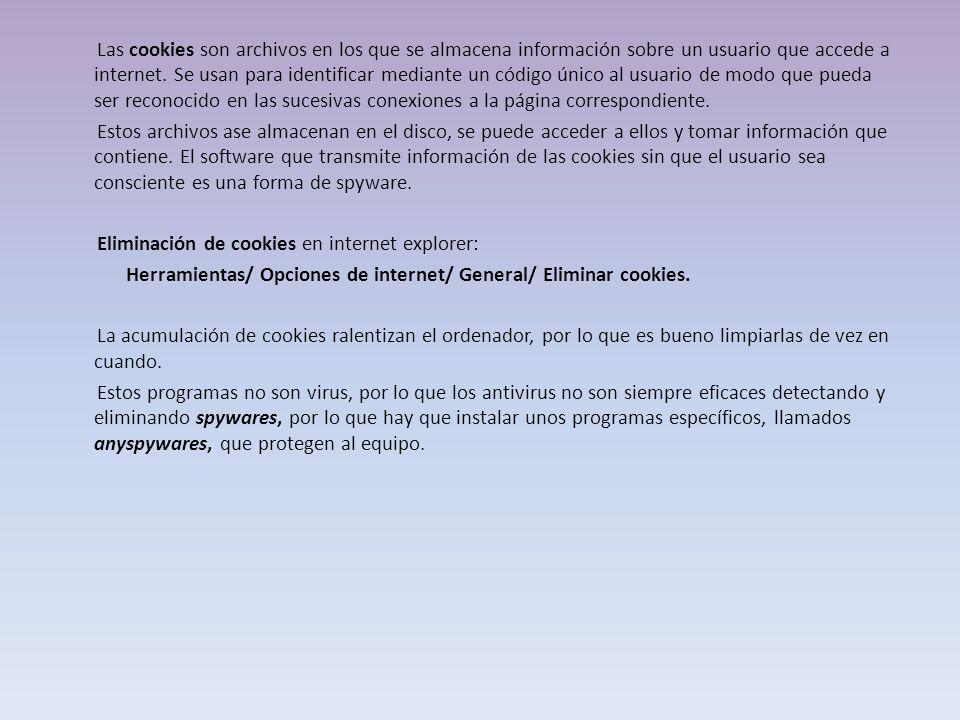 Las cookies son archivos en los que se almacena información sobre un usuario que accede a internet.