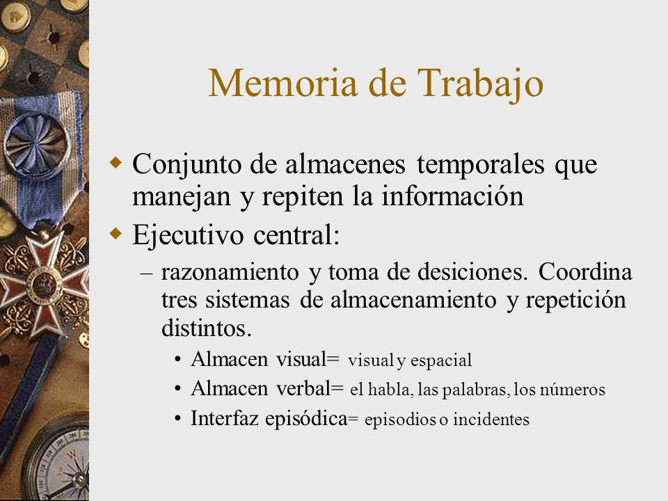 Memoria de Trabajo Conjunto de almacenes temporales que manejan y repiten la información. Ejecutivo central: