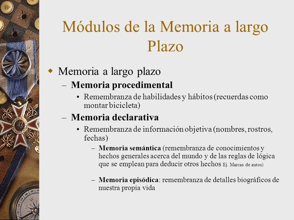 Módulos de la Memoria a largo Plazo