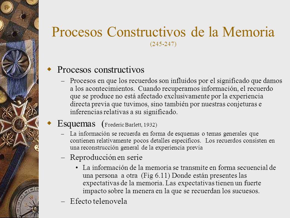 Procesos Constructivos de la Memoria (245-247)