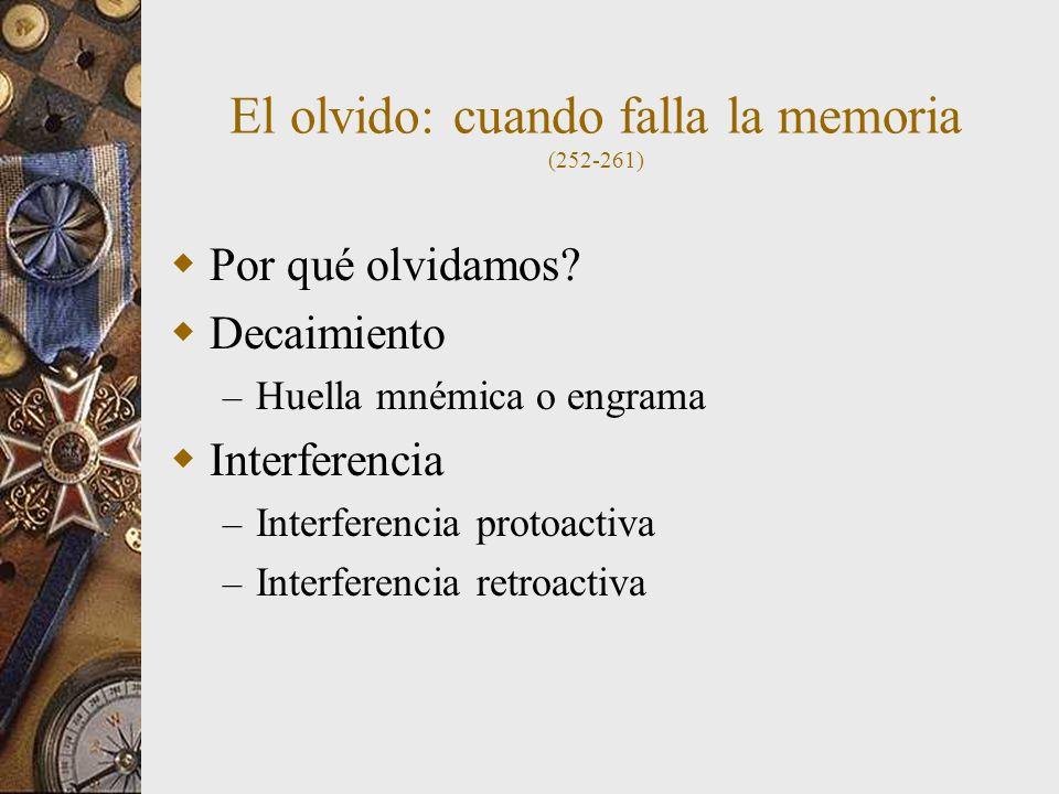 El olvido: cuando falla la memoria (252-261)