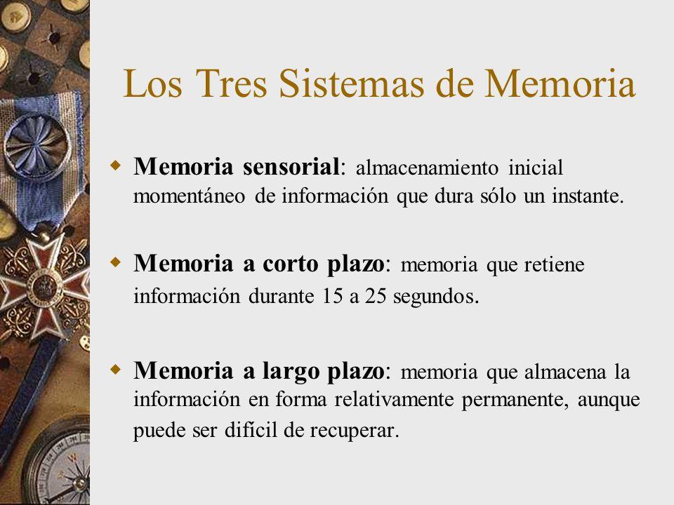 Los Tres Sistemas de Memoria