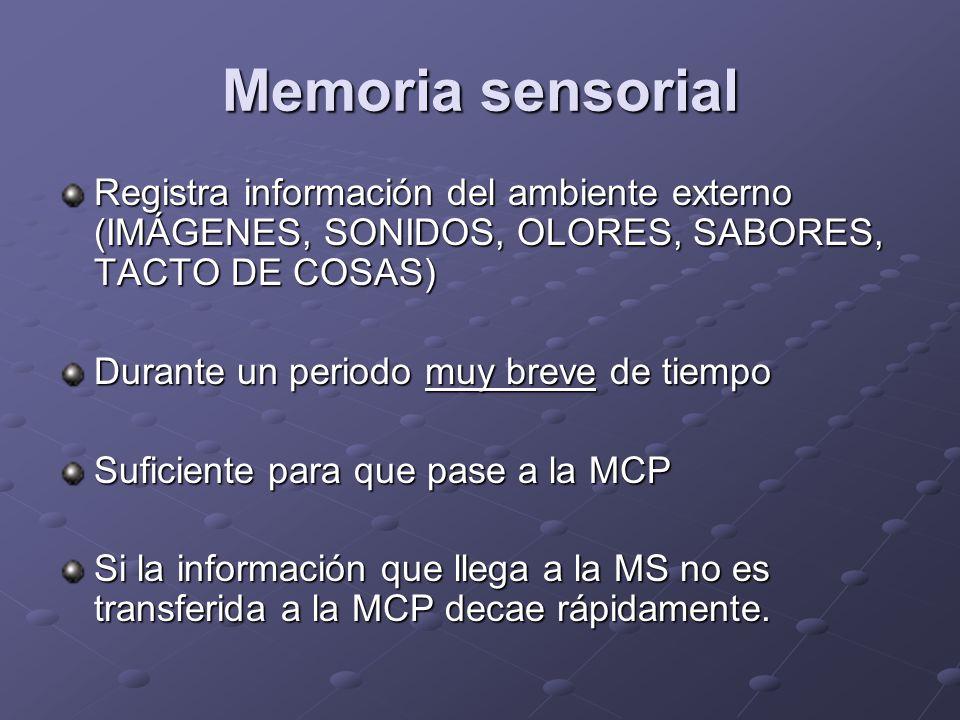 Memoria sensorial Registra información del ambiente externo (IMÁGENES, SONIDOS, OLORES, SABORES, TACTO DE COSAS)