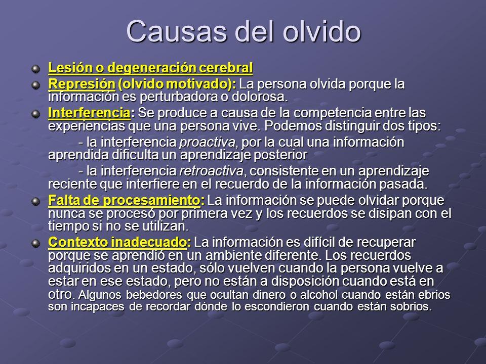 Causas del olvido Lesión o degeneración cerebral