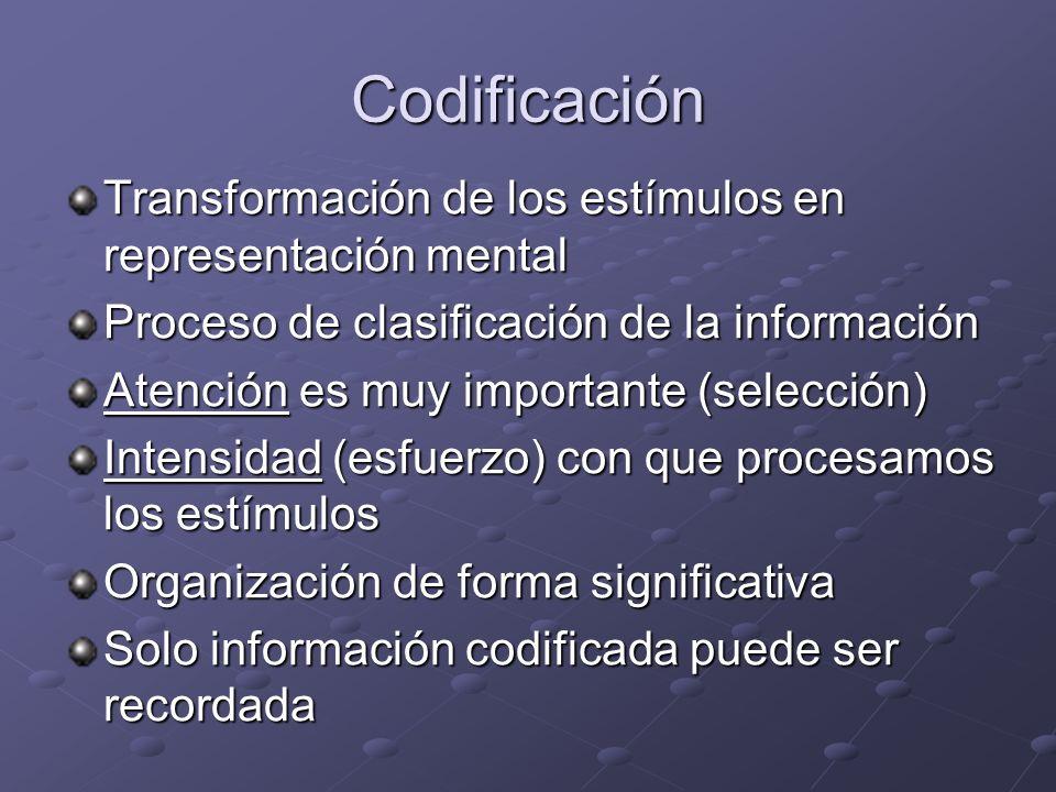 Codificación Transformación de los estímulos en representación mental