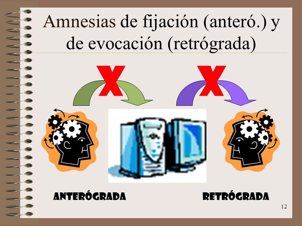 Amnesias de fijación (anteró.) y de evocación (retrógrada)