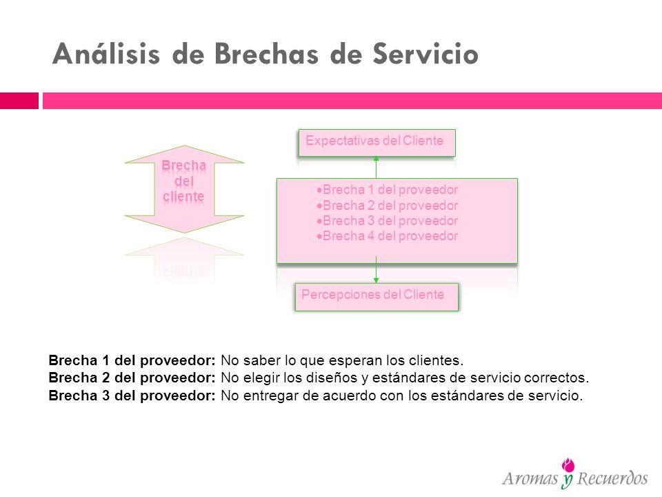 Análisis de Brechas de Servicio