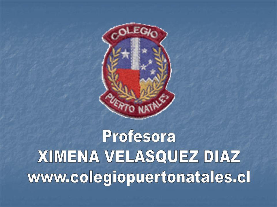 Profesora XIMENA VELASQUEZ DIAZ www.colegiopuertonatales.cl