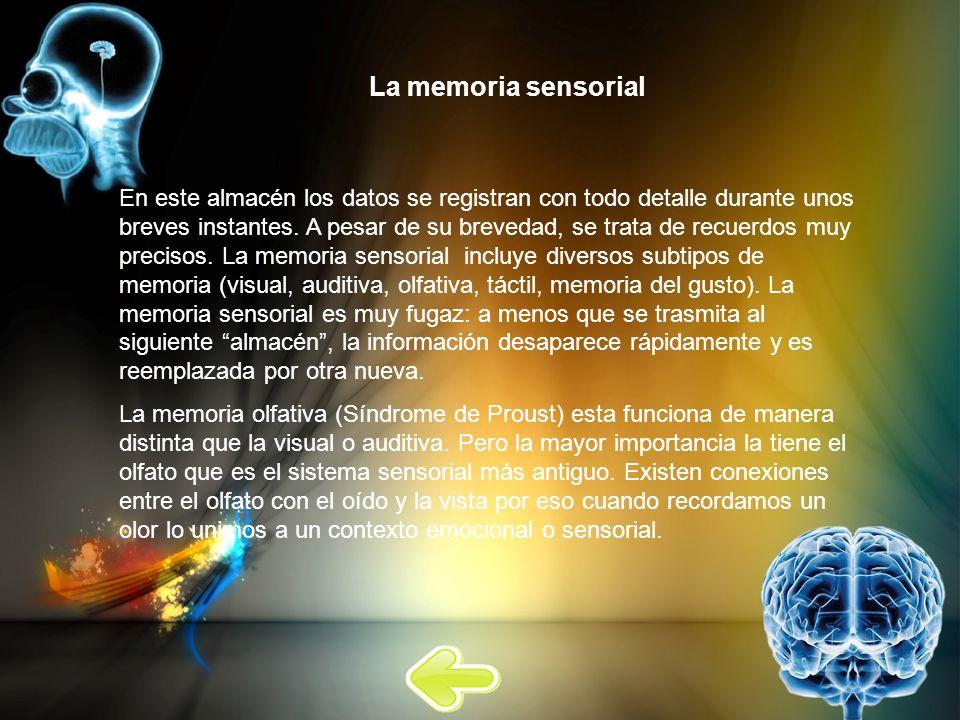 La memoria sensorial