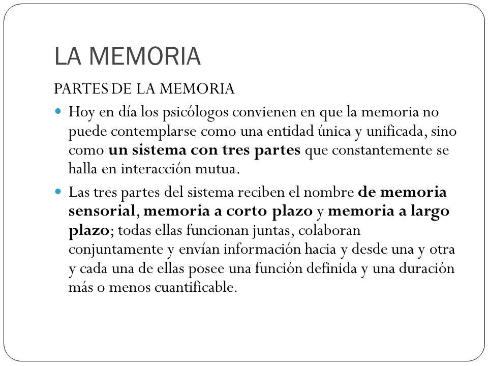 LA MEMORIA PARTES DE LA MEMORIA