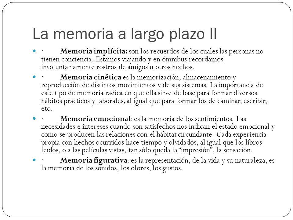 La memoria a largo plazo II