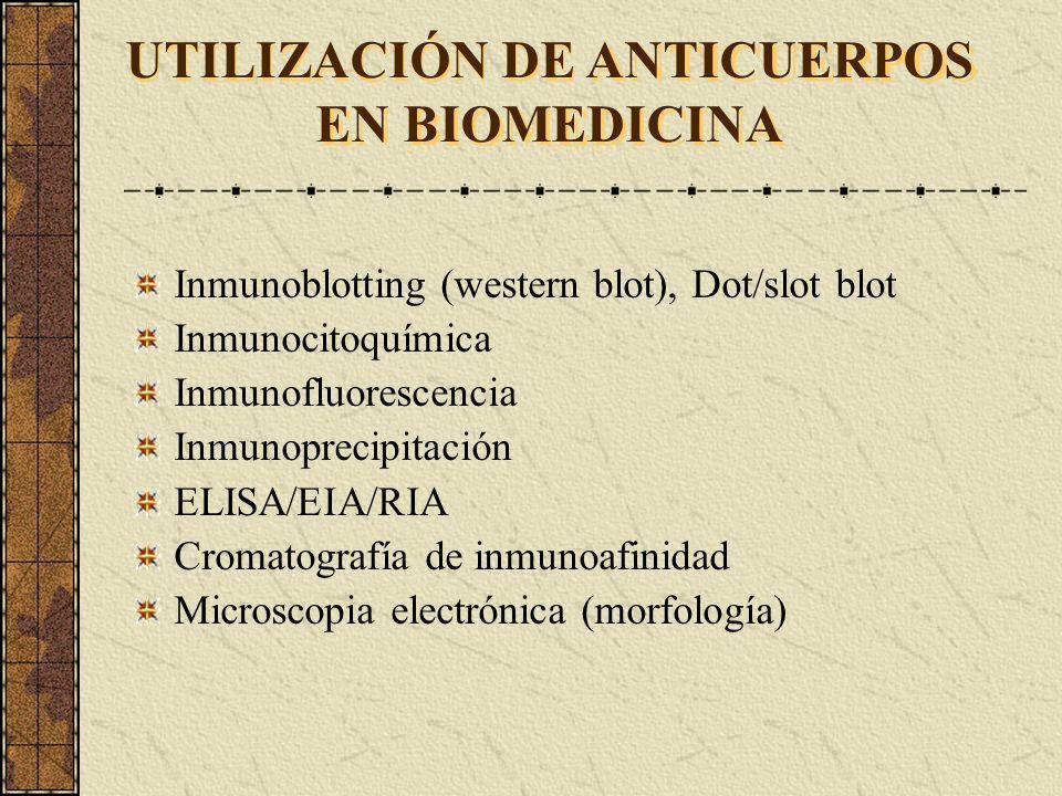 UTILIZACIÓN DE ANTICUERPOS EN BIOMEDICINA