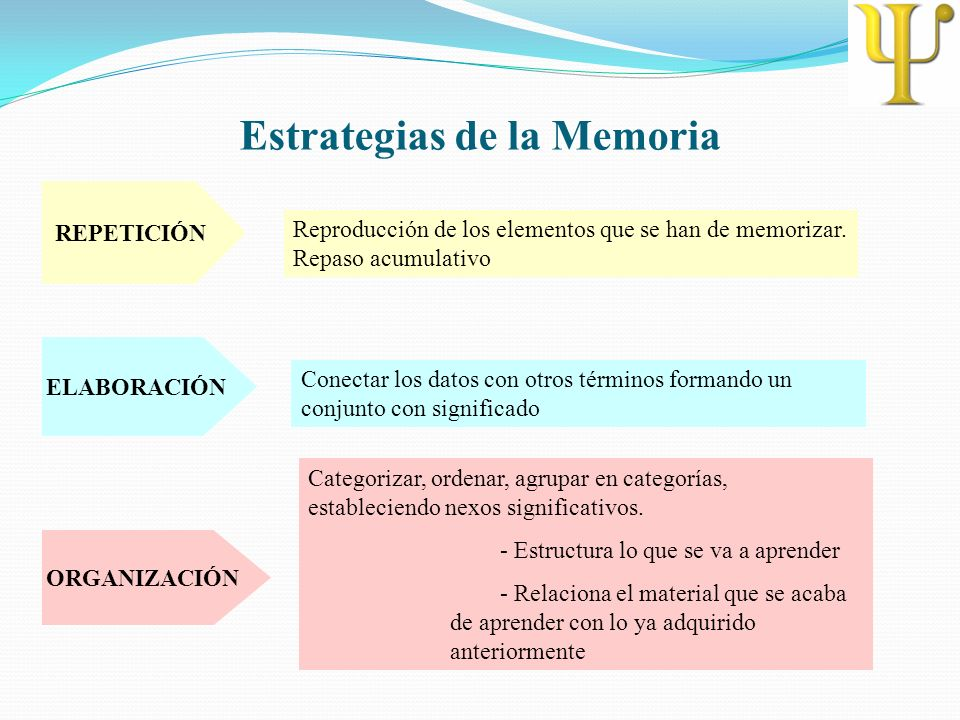 Estrategias de la Memoria