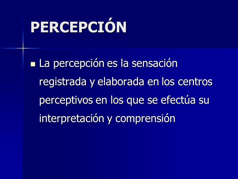 PERCEPCIÓN La percepción es la sensación registrada y elaborada en los centros perceptivos en los que se efectúa su interpretación y comprensión.