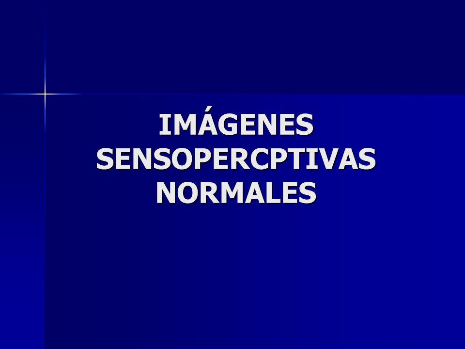 IMÁGENES SENSOPERCPTIVAS NORMALES
