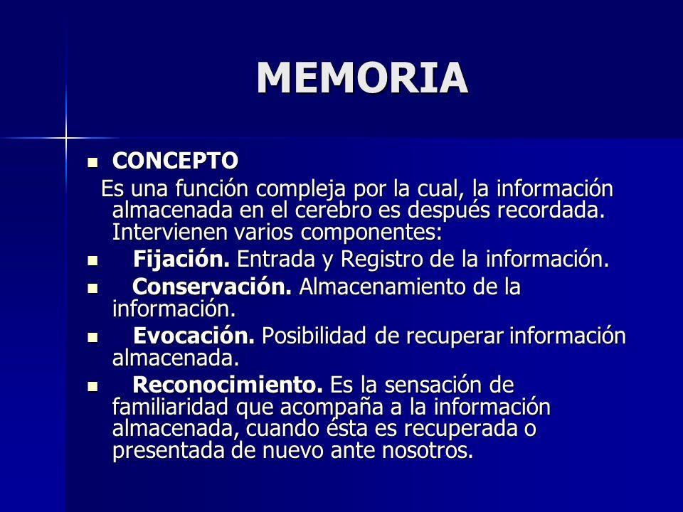 MEMORIA CONCEPTO. Es una función compleja por la cual, la información almacenada en el cerebro es después recordada. Intervienen varios componentes: